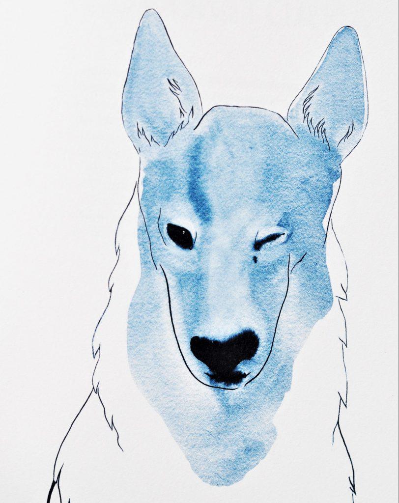 pes Snížek